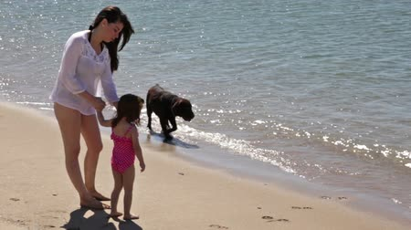 cachorro : Beautiful young women enjoying a sunny day at the beach with her daughter and her dog