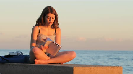 aluno : Full body portrait of a single student studying memorizing notes at sunset on the beach