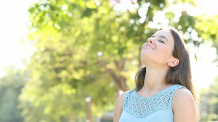 breathing fresh air : Happy woman breathing deeply fresh air in a forest or park with a sunny sunny background Stock Footage