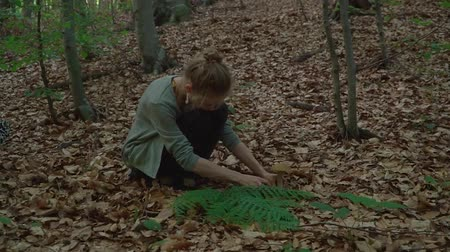 opadavý : girl found a mushroom in the forest and cut it