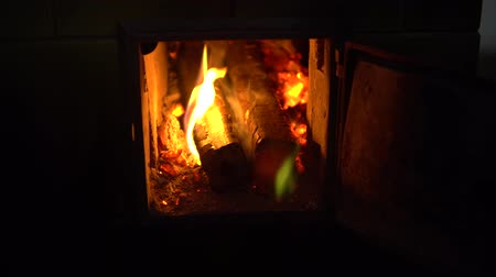 briquettes : Burning fire in the fireplace, embers in the fireplace, the boy is heated by the fireplace. the fire in the furnace. puts the wood in the oven and closes it Stock Footage