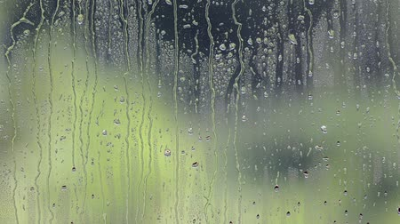 ulewa : rain drops on glass Wideo