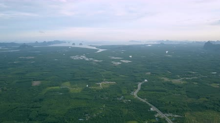 gyertyafa : Aerial view of palm oil plantation and andaman seaboard in krabi province southern, Thailand.