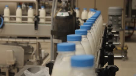 üretim : Bottled milk production line at dairy plant
