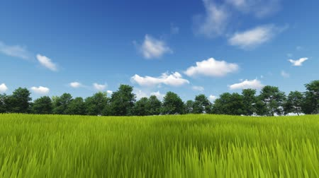 evaporate : Cloud movement over green landscape Stock Footage