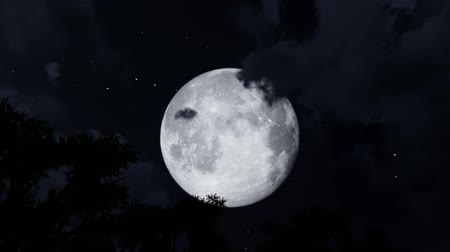 Full moon time-lapse as it eventually becomes obscured by clouds Stok Video