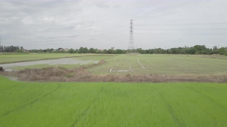 pilon : aerial view moving in farmland in Thailand with high voltage electricity pylon