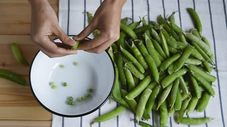 peas : womans hands opening fresh ripe green pea bean on metal bowl, striped napkin and pods heap on wood table background, top view of closeup full hd stock video footage in real time