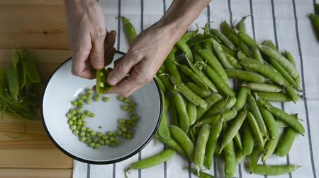 pea pods : mans hand taking fresh ripe green pea bean from heap on striped napkin, shelling, showing opened peas above metal bowl on wood table, top view of closeup full hd stock video footage in real time