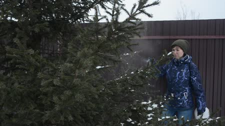 schädlingsbekämpfung : young woman cares for tree in winter yard, spraying spruce with liquid fertilizers or protective chemicals pesticides from insects, stock video footage in real time