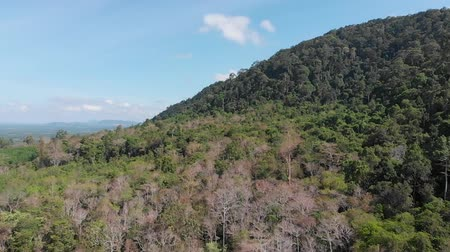 невозделанный : Open world nature scenics 360 dedree view. Above the mountain covering by forest in Trang south of Thailand Стоковые видеозаписи
