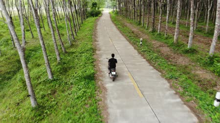 Aerial view young man driving motorcycle on concrete road between para rubber trees plantation Stock mozgókép