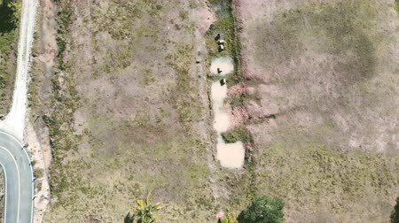 tropikal iklim : Aerial view of dry land and road scene background