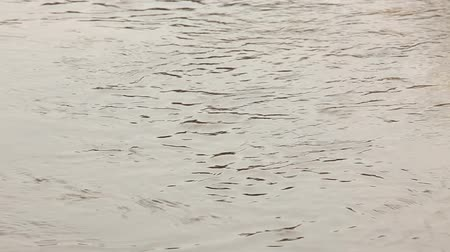 limpid : Background of the surface of the river water Stock Footage