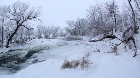Украина : Winter scenic of the River Krynka, Donetsk region, Ukraine. Full HD Стоковые видеозаписи