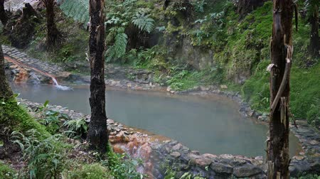 caldeira : Thermal waters Caldeira Velha, Sao Miguel island on Azores, Portugal