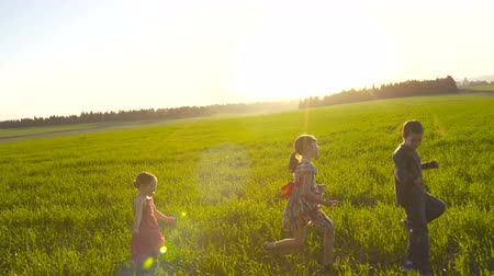 pszenica : Three kids walking in a field during sunset Wideo