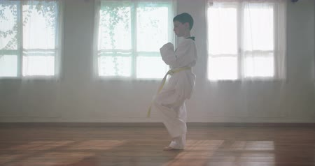 sanat : Slow motion footage of a young boy practicing martial arts Stok Video
