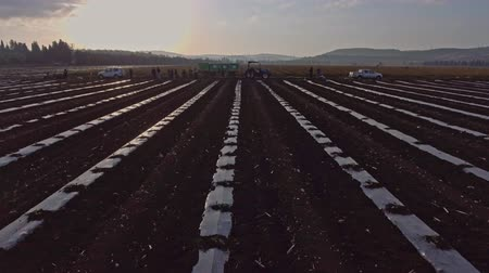 hand crafted : Aerial footage of farm workers working in a field with tractors Stock Footage