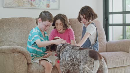 itaat : Three kids playing with a German pointer dog inside a house