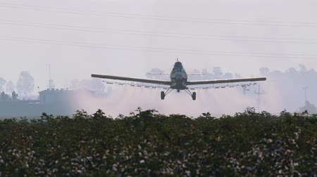 cultivo : Crop duster spraying chemicals over a cotton field - slow motion