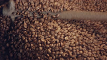 sementes : Roasted coffee beans mixed in a machine in a coffee factory