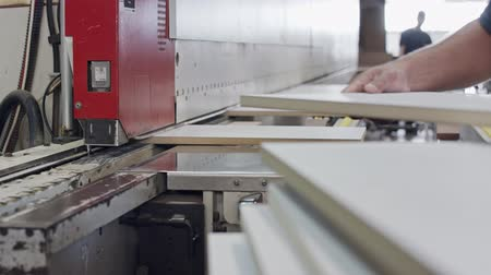 timber cutting : Worker in a furniture manufacturing factory inserting wood plates into a machine