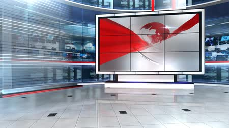 television set : Virtual Newsroom