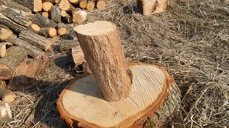 топор : Cutting wood logs in the country