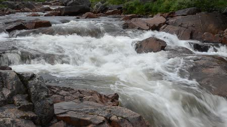 kaperdalen : fast flowing salmon river in the arctic wilderness in summer Stock Footage