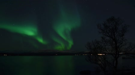 világosság : majestic aurora borealis, northern light over fjord and snowy mountain in autumn timelapse