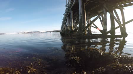 kullancs : old wooden bridge underbelly covered in old barnacles with calm waves and bright sunshine in northern norway, tromsoe, whale island