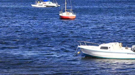 sete : Small sinners boat on mediterranean sea in Herault, Occitania in south of France Stock Footage