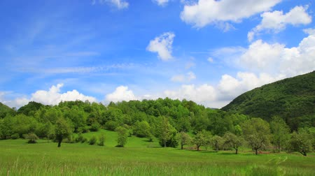 occitania : Time lapse of spring landscape in Pyrenean countryside, Aude in southern of France