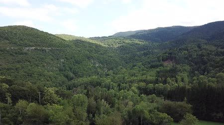aerial view of meadow and forest in Pyrenees, Aude in the south of France