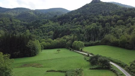 biodiversidade : aerial view of path, meadow and forest in Pyrenees, Aude in southern of France