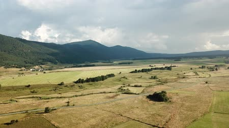 Aerial view of cultivated meadow in Capcir filmed with drone, Pyrenees orientales  in southern of France