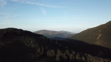 aerial view of wild pyrenean mountains and pine forest filmed with drone, Aude in the south of France Stock Footage