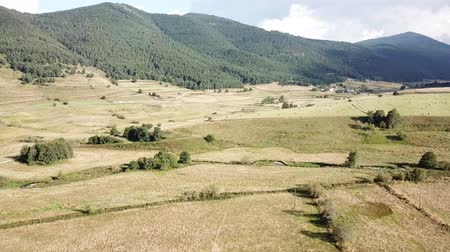 capcir : Aerial view of cultivated meadow in Capcir filmed with drone, Pyrenees orientales  in southern of France