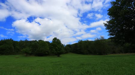 biodiverzitás : Time lapse of meadow with moving clouds in Pyrenees, Aude in the southern of France