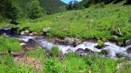 mountain stream in the Pyrenees, Ariege in the south of France