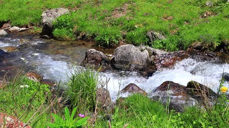perçin : mountain stream in the Pyrenees, Ariege in the south of France