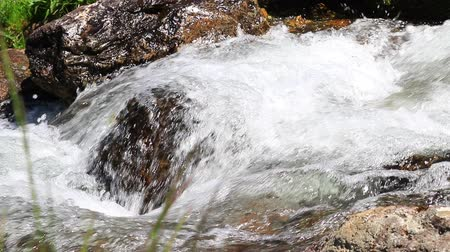 water flowing in a Pyrenean stream Stock Footage