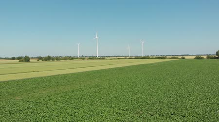 Wind turbines producing alternative energy.