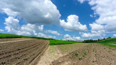 bab : Timelapse. Cultivated fields relating to flowing clouds on the blue sky.