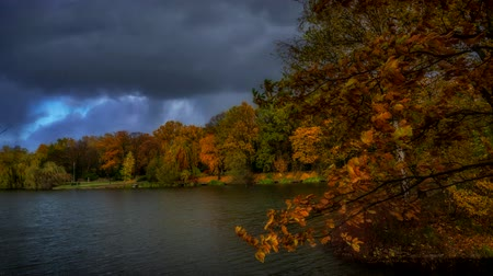 Timelapse - autumnal landscape in the city park.