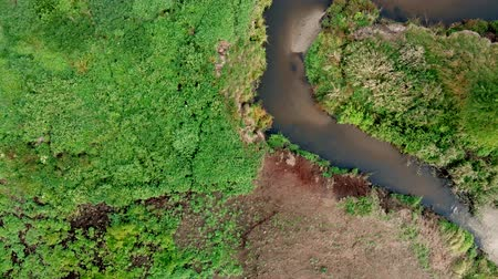 Top view of the area above the wild river.