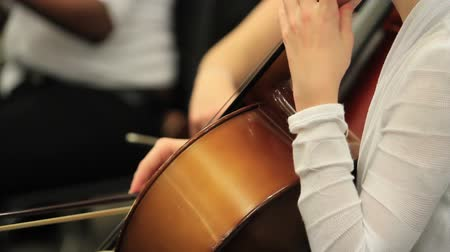 orkiestra : Performance of children orchestra. Wideo