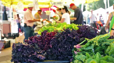 usa : Summer farmers market on Main Street in Parker Colorado.