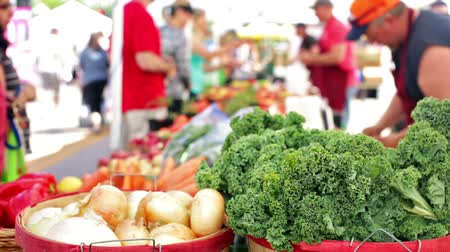 agricultores : Summer farmers market on Main Street in Parker Colorado.
